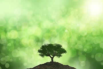 environmental-benefits_img